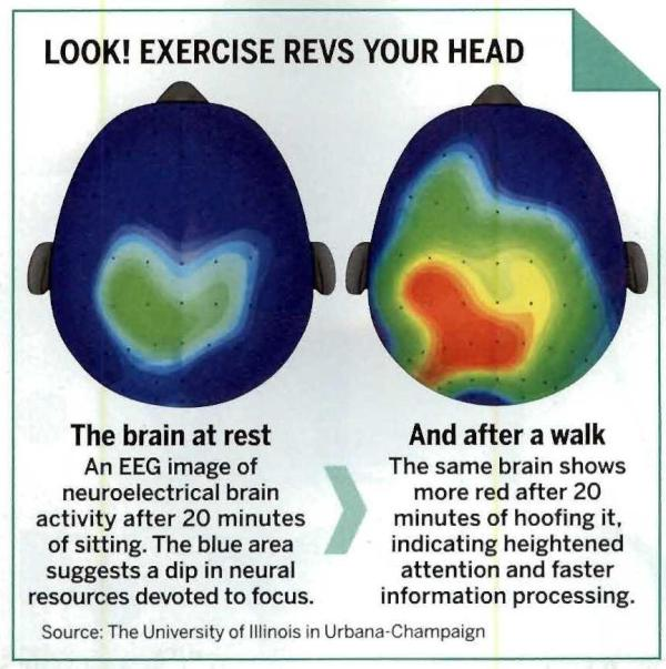 brain with exercise