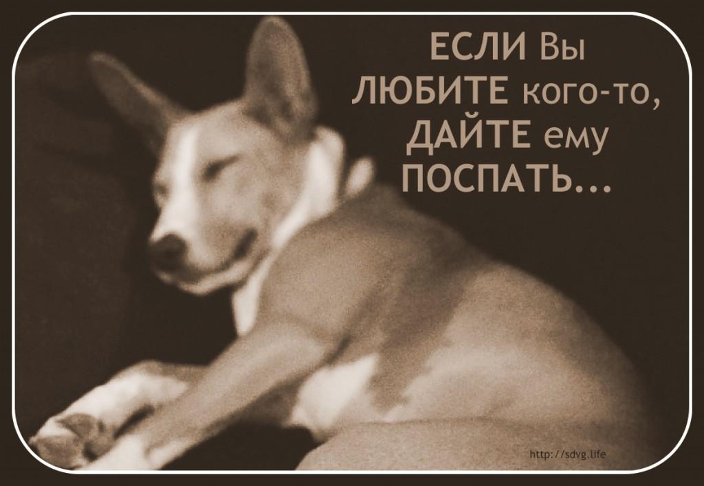 sleep_love